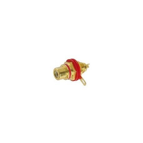 Embase RCA femelle dorée isolée - rouge